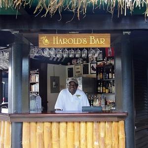 harolds_bar_lg.jpg