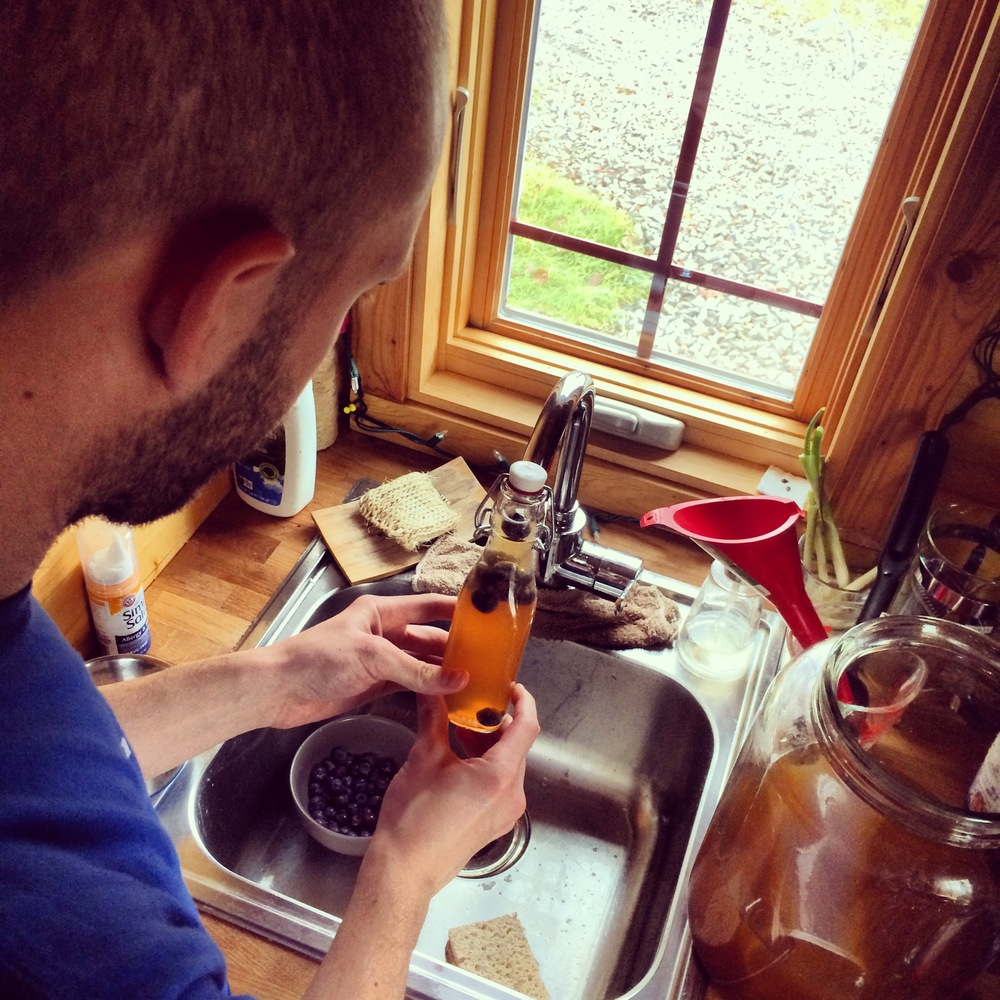 Starting to bottle the Kombucha! We decided to go with blueberries for this batch. In the past we have done nectarine, pear, ginger and peach.
