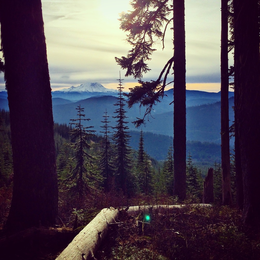 Wonderful view of Mt. Rainier from the hiking trail.