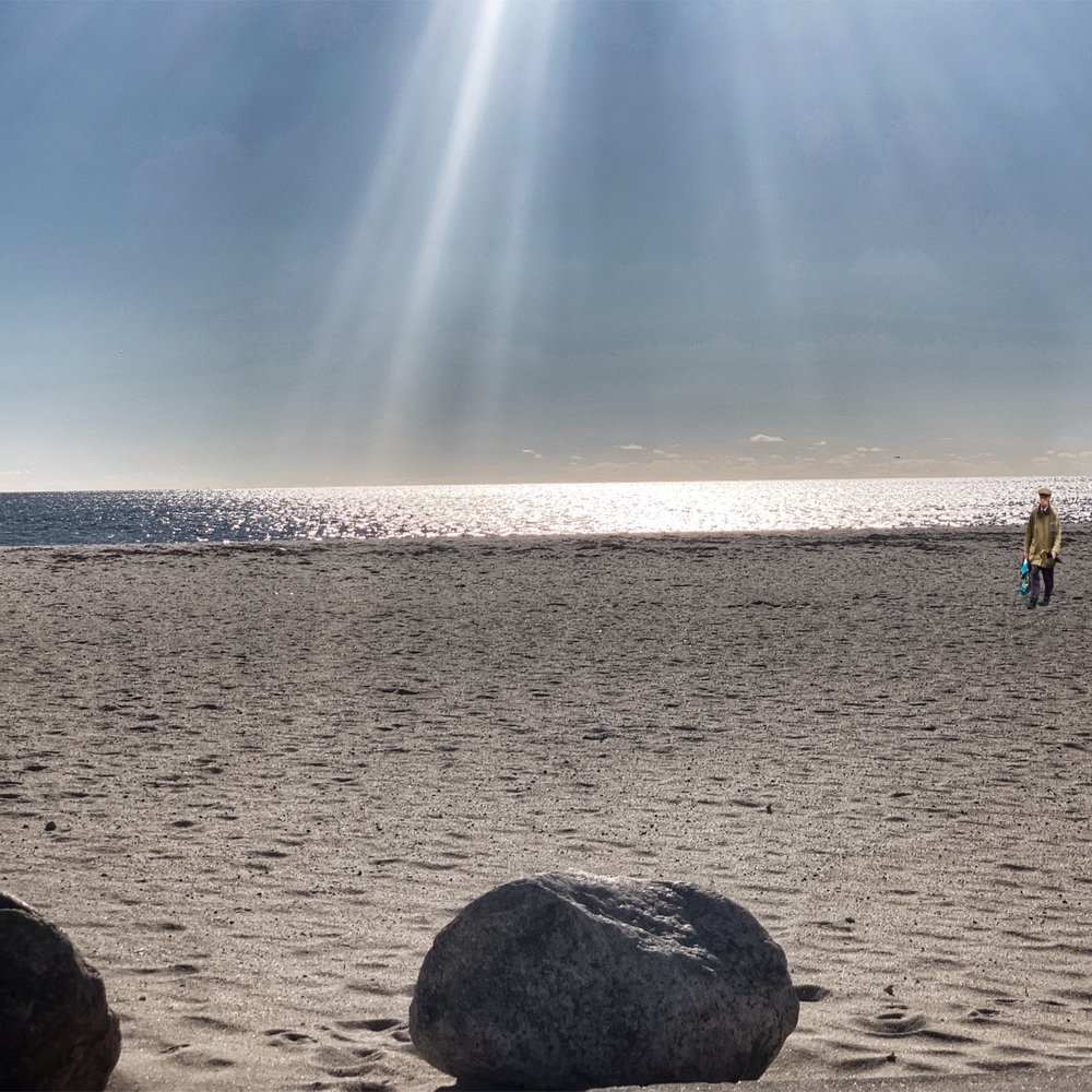 Shining Sea (and Harold) - iPhone XSMax, Snapseed, Procreate
