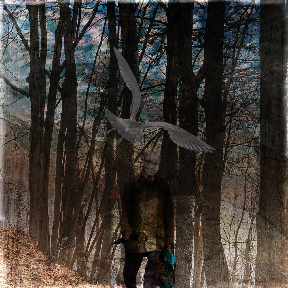 Chosen - Superimpose X, Distressed FXplusn