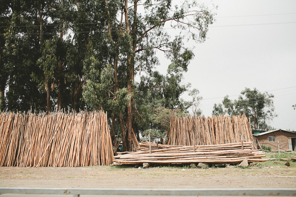 Ethiopia wood piles for sale photography Africa