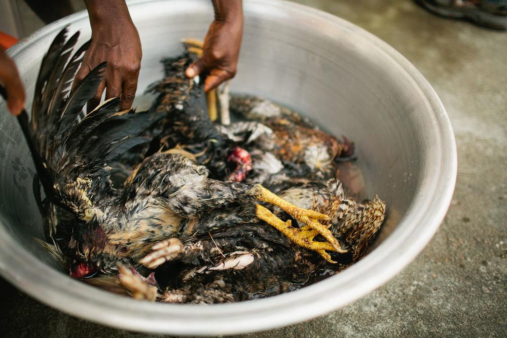 Liberia-0541.jpg