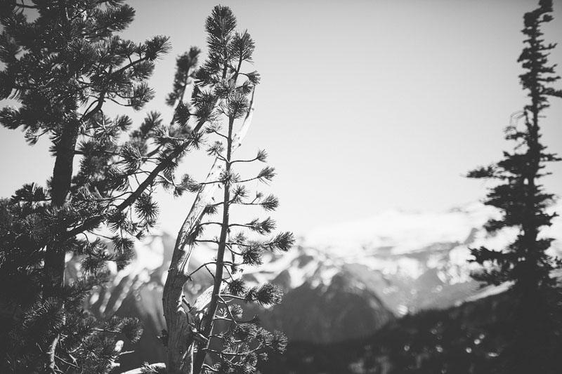 Mount-Rainier-15.jpg