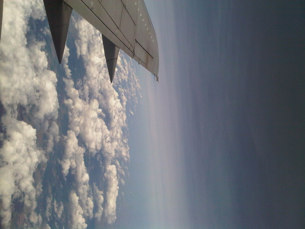 Flying_2
