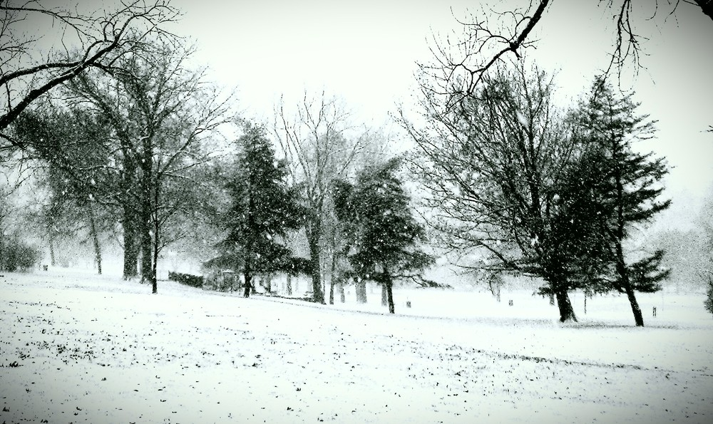 Looks-like-snow