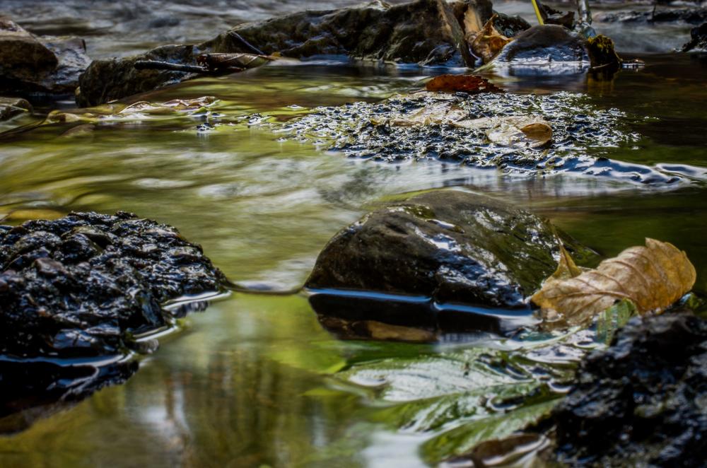 20140831-Heman Park Water-PMG_6195.jpg