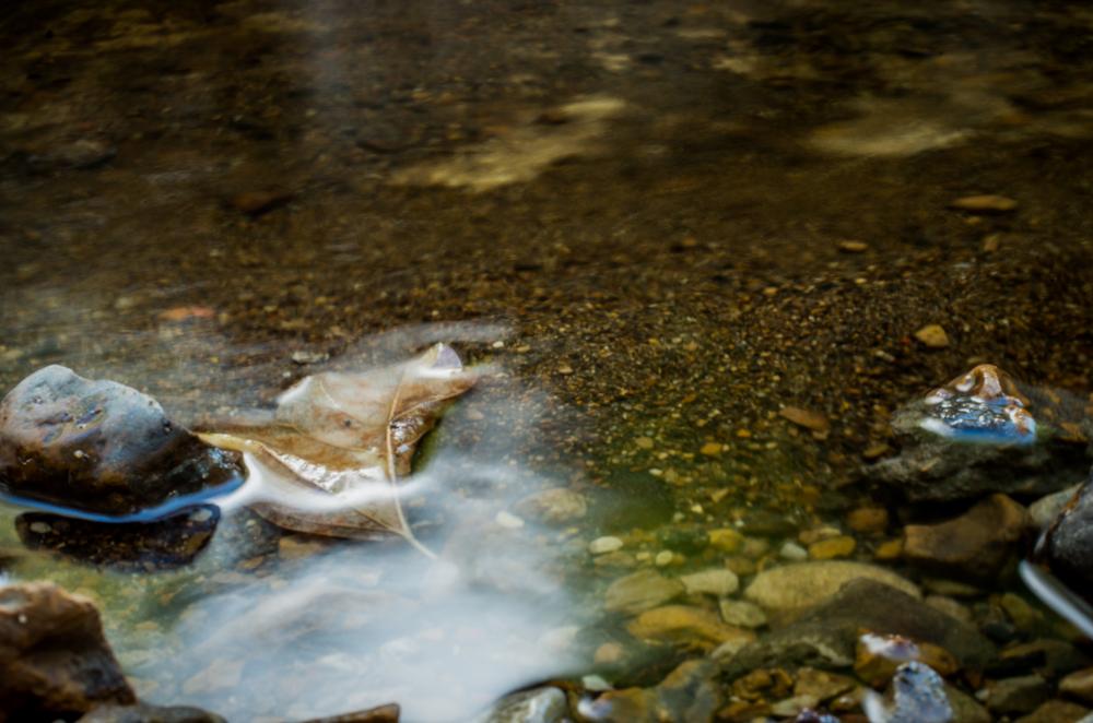 20140831-Heman Park Water-PMG_6197.jpg