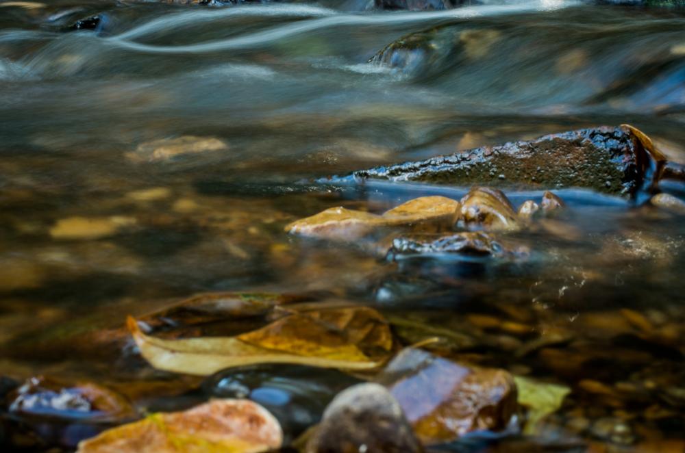 20140831-Heman Park Water-PMG_6185.jpg