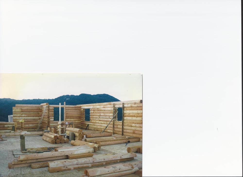 log walls 2.jpg