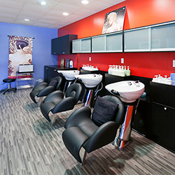 Alexander's Salon