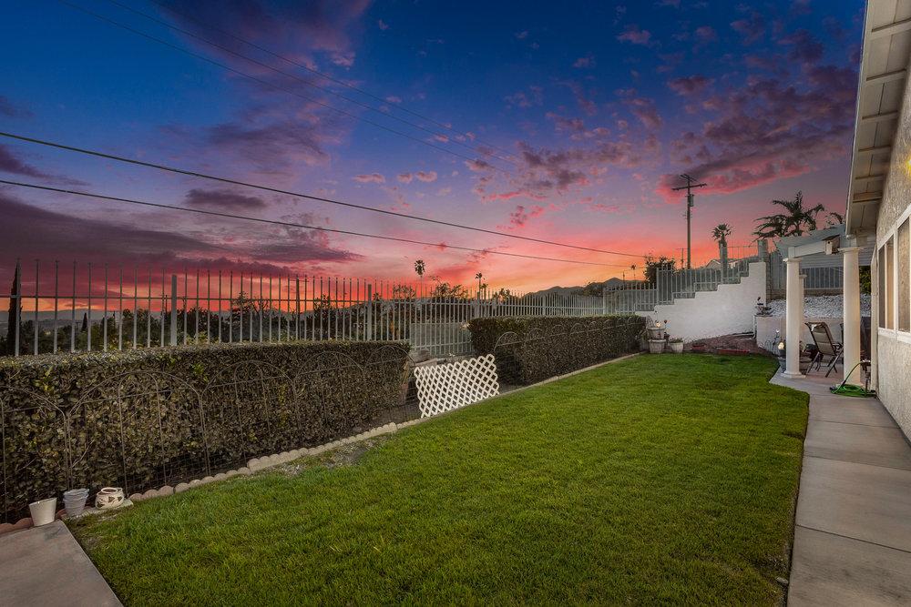 photo of backyard grass at sunset