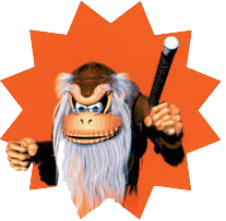 the secrets of donkey kong country 2 sirlin net game design