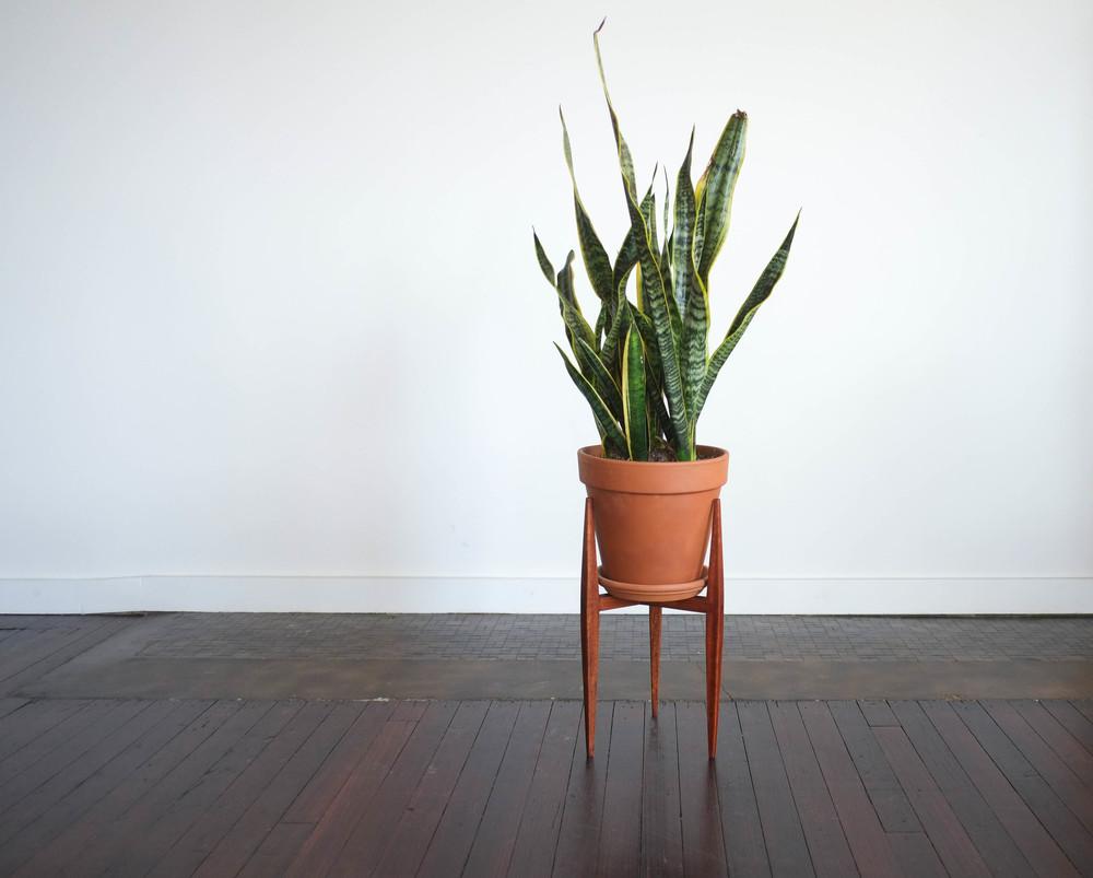 PastranaStudio_planterstand (1 of 1).jpg