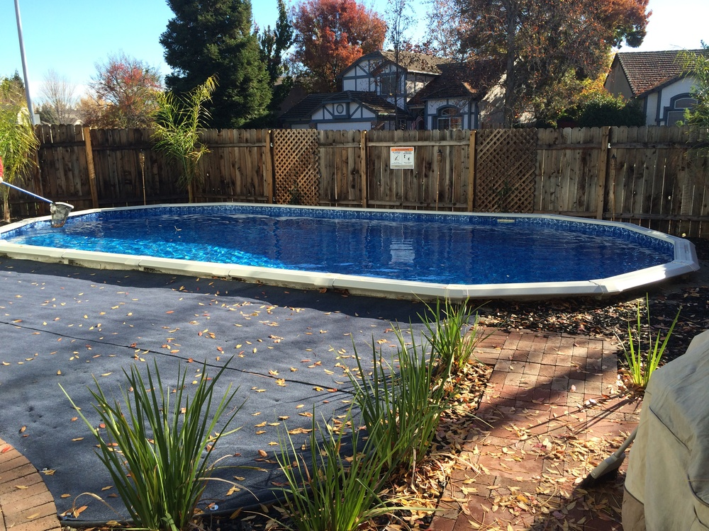 Pictures of 16x32 inground pool joy studio design for Pool design roseville ca