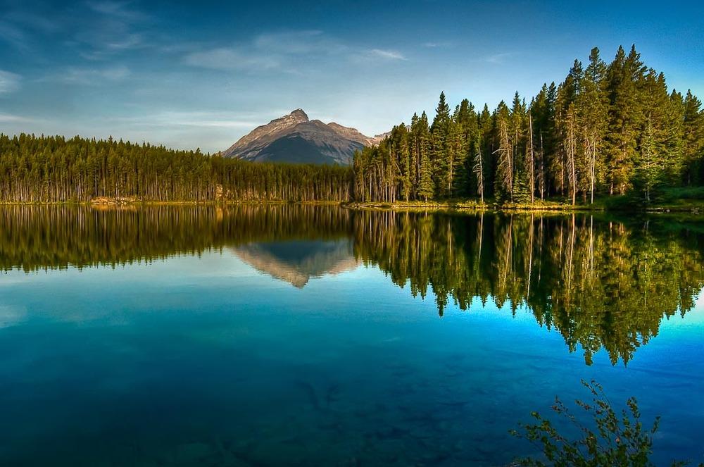 Herbert   Lake, Icefields Parkway, Alberta, Canada