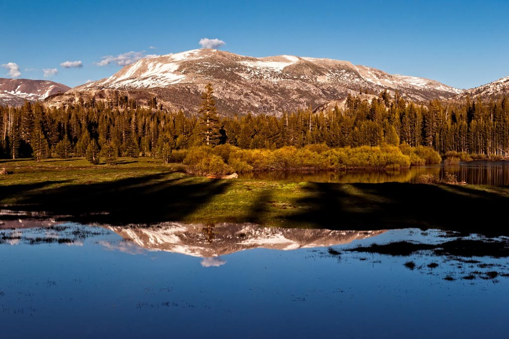 Tioga  Road, Yosemite National Park, California