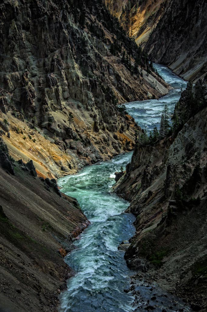 Brink of the Lower Falls Trail, Grand Canyon of the Yellowstone, Yellowstone National Park, Wyoming