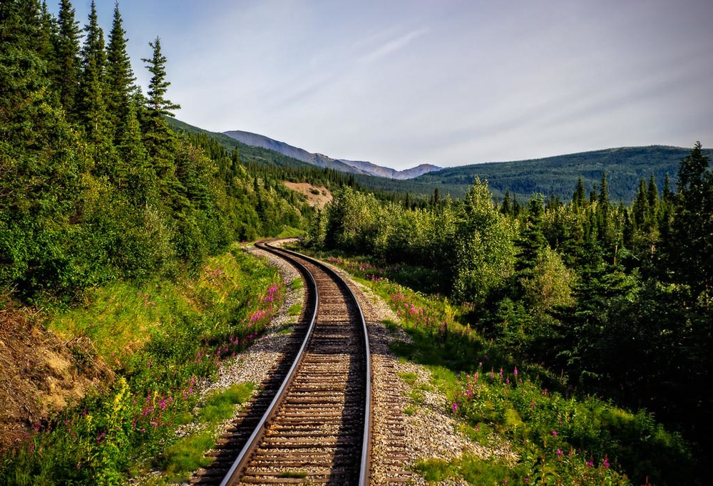 Alaskan Rail, Denali National Park, Alaska