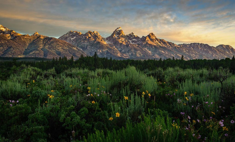 Blacktail Ponds Overlook, Grand Teton National Park, Wyoming