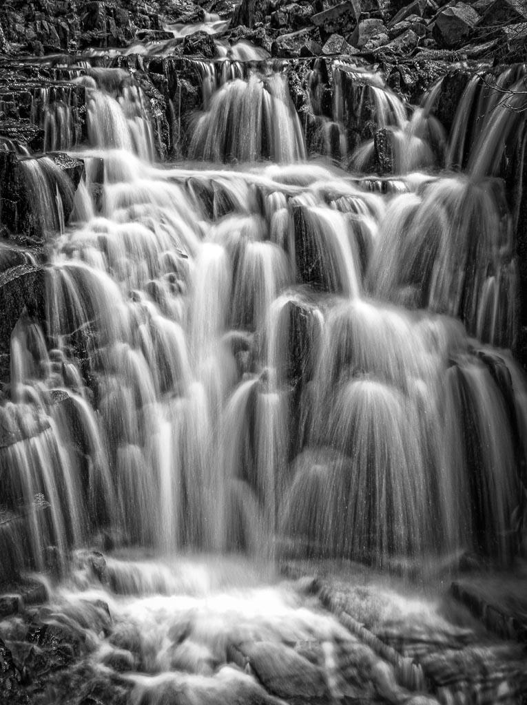 Sunbeam Creek, Mount Rainier National Park, Washington