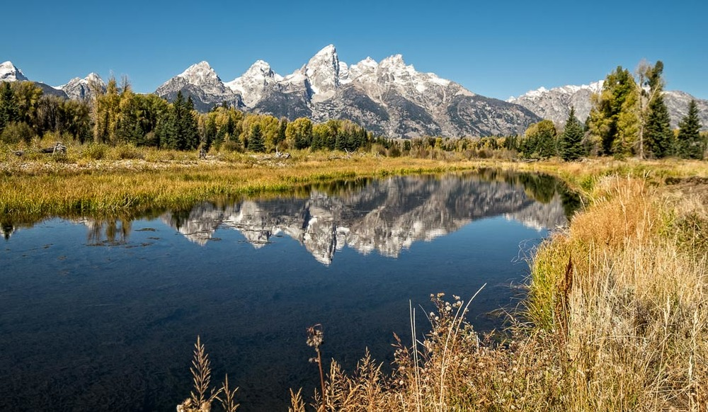 Lower Schwabacher's Landing, Grand Teton National Park, Wyoming