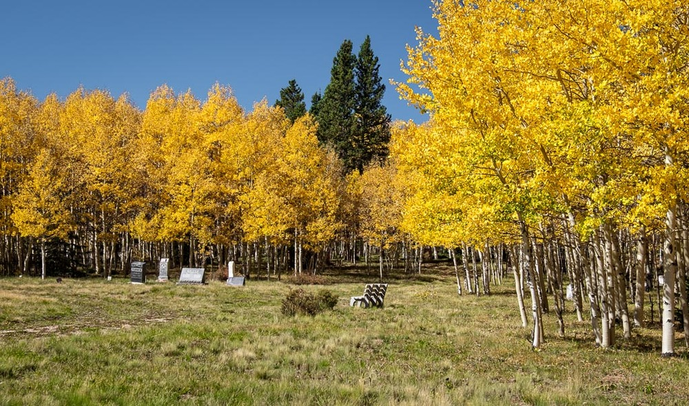 Buried Under Aspens