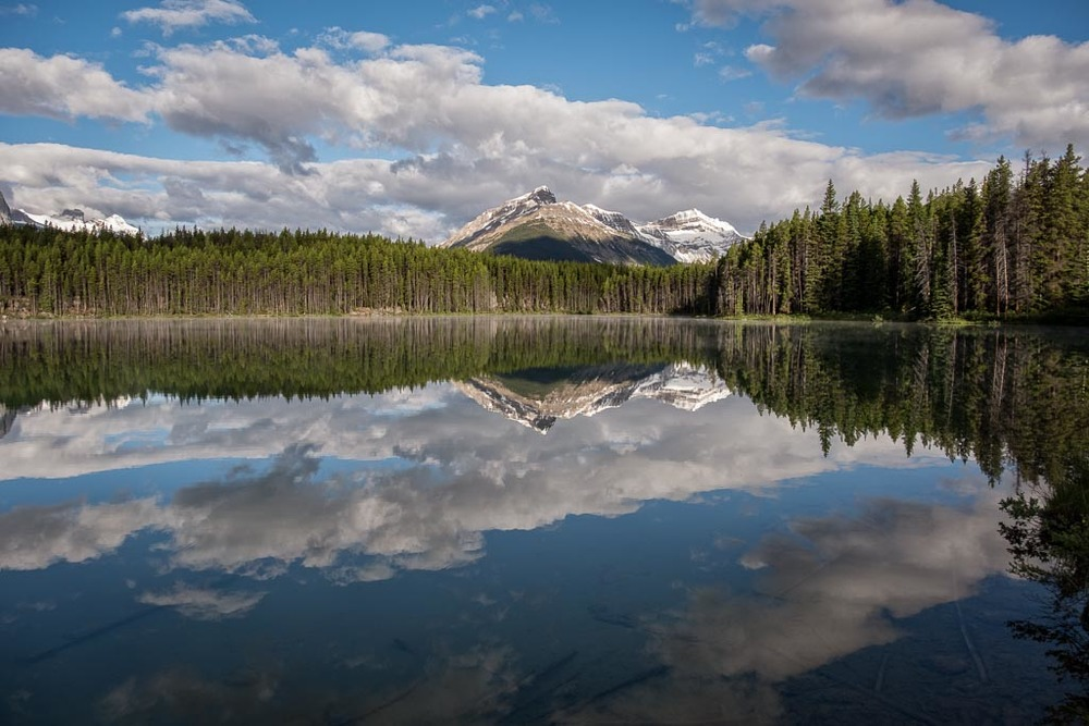 Herbert Lake, Icefields Parkway, Banff National Park, Alberta