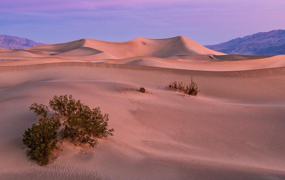 Mesquite Dunes, Death Valley National Park, California