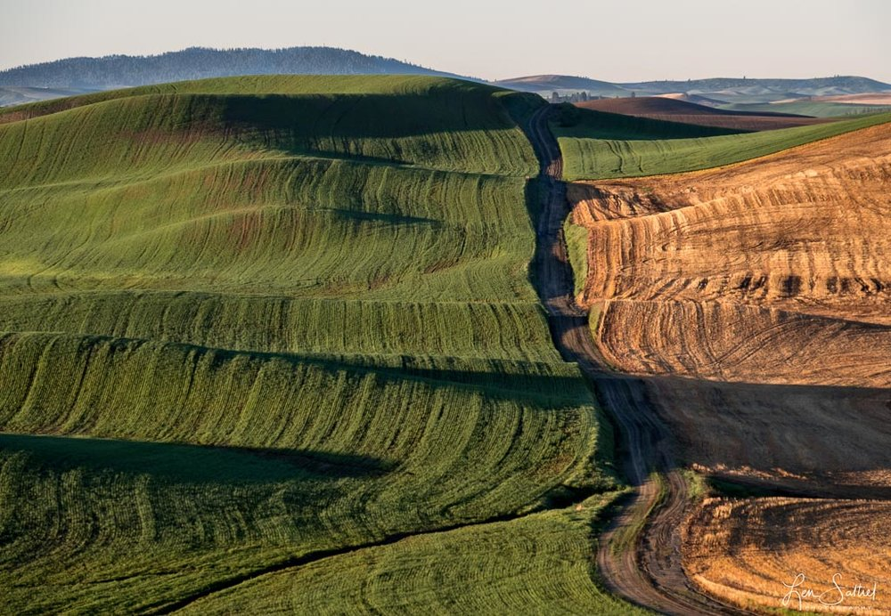 Palouse Backroads