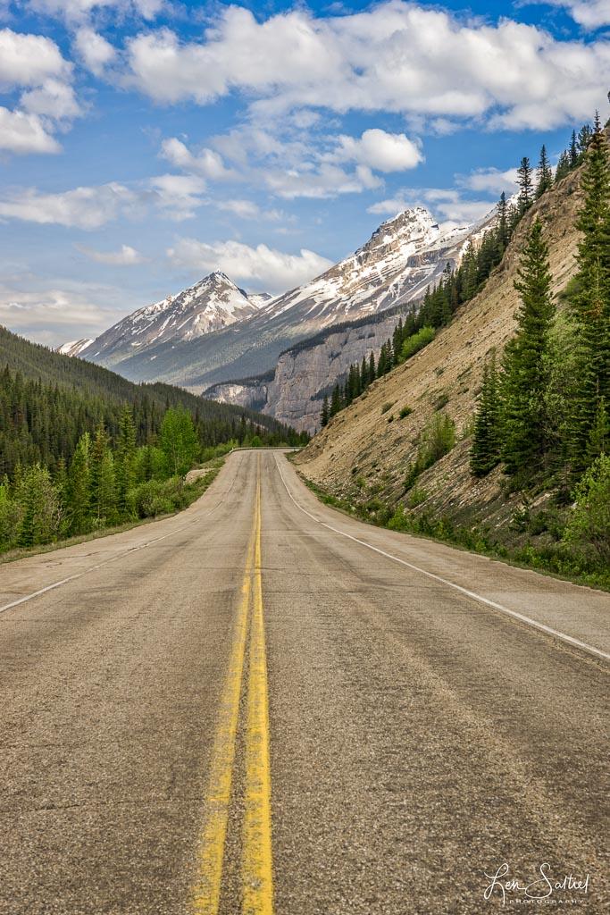 Road Beauty