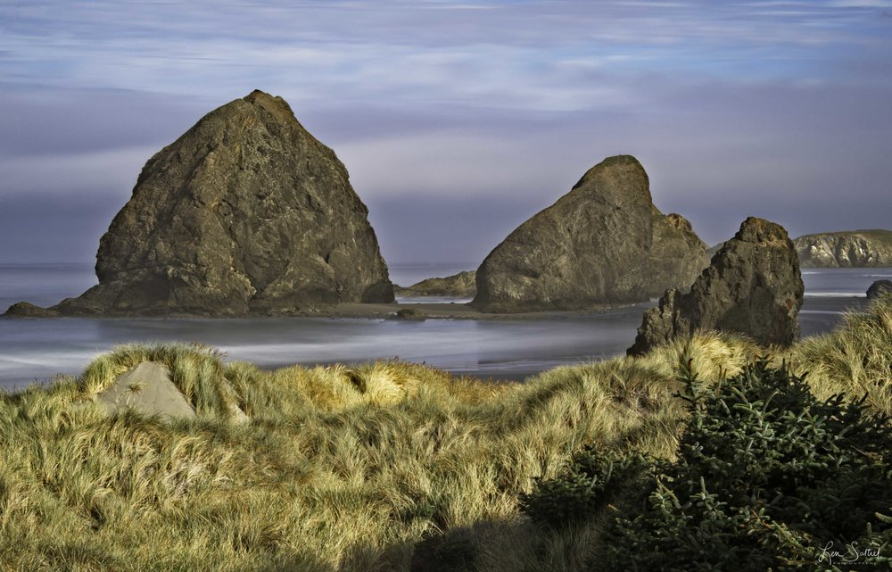 Coast Beauty, Gold Beach, Oregon