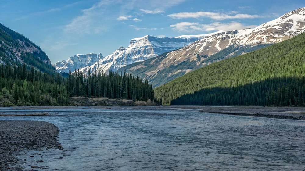 Bow River View