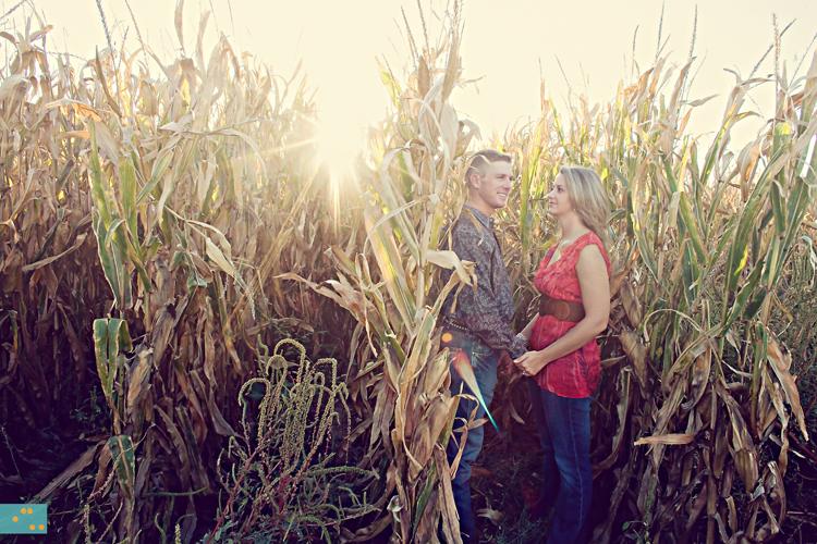 bophotography-cornfield sn3.jpg