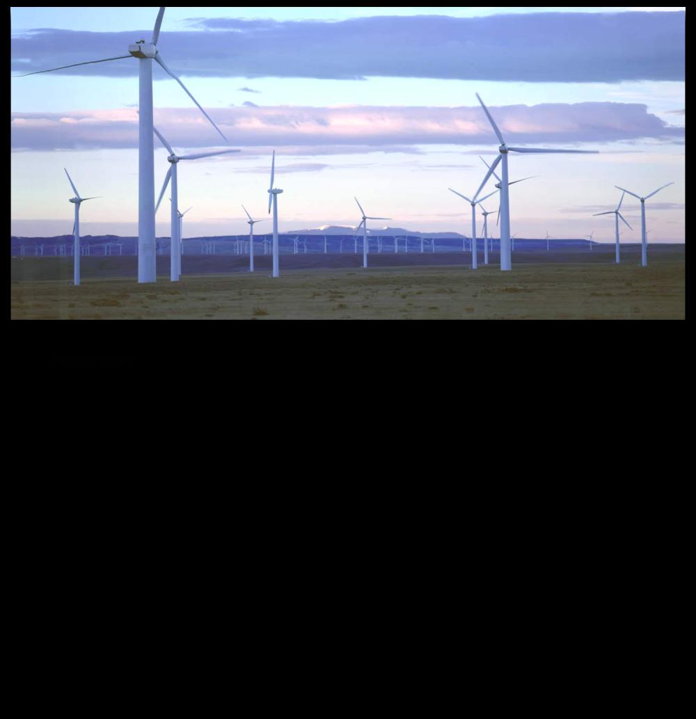 Lakota-Ridge-Plant-Info.png