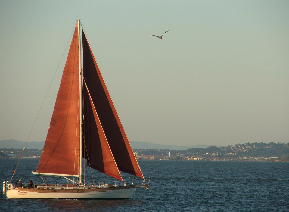 Sailboat - San Francisco 2009