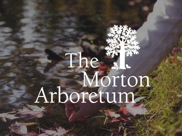 Morton Arb.png