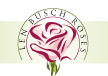 Len Busch Roses