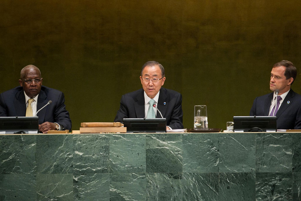 Secretary General Ban Ki-Moon?s 2014 Climate Conference and Media Extravaganza