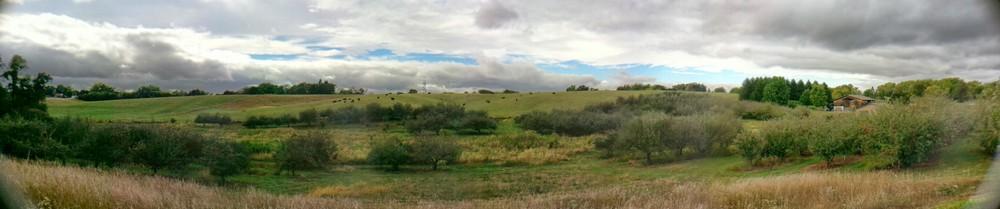 Appleberry Panorama