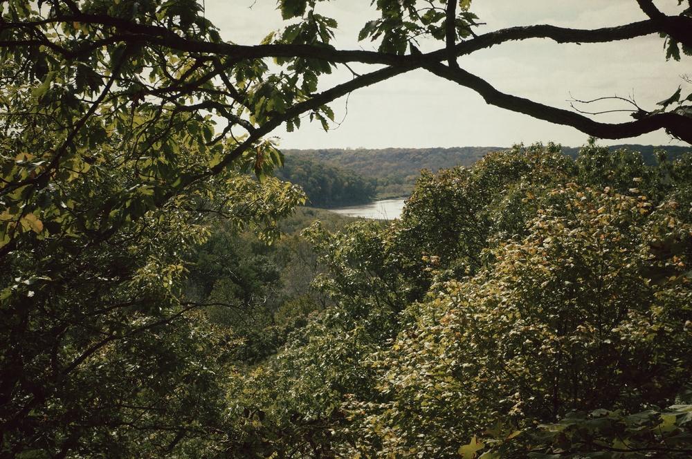 Ledges Landscape