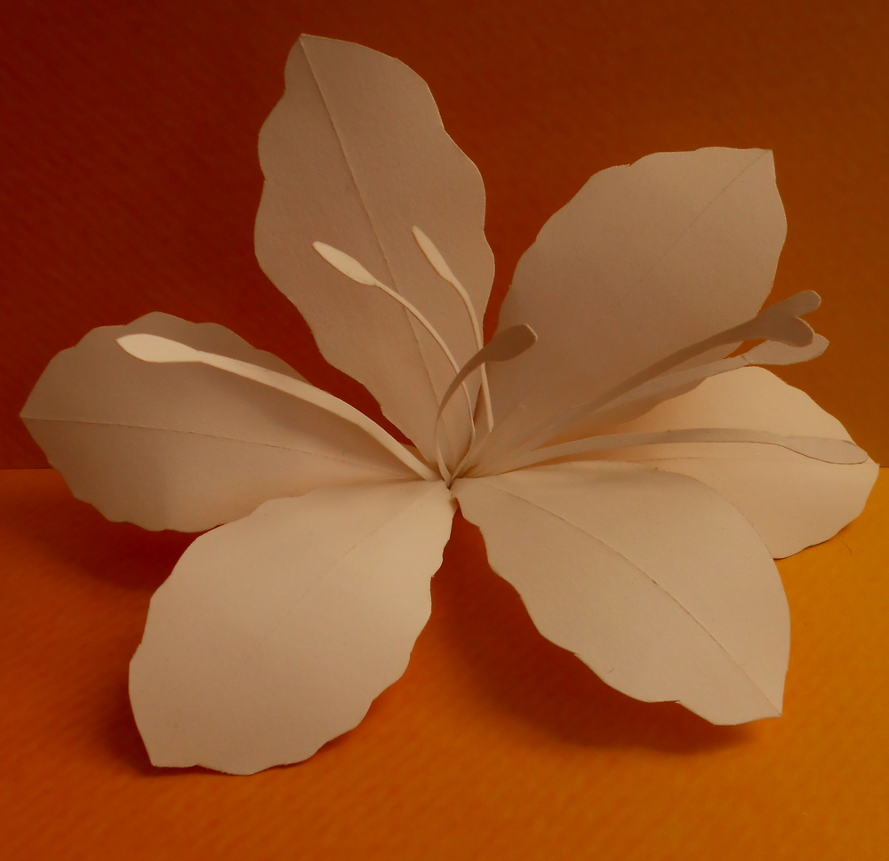 lily paper sculpture.jpg