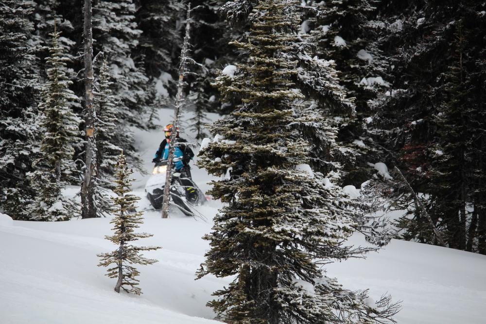 Lanina sled camp 084.jpg