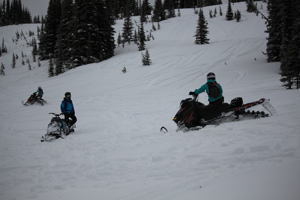 Lanina sled camp 016.jpg