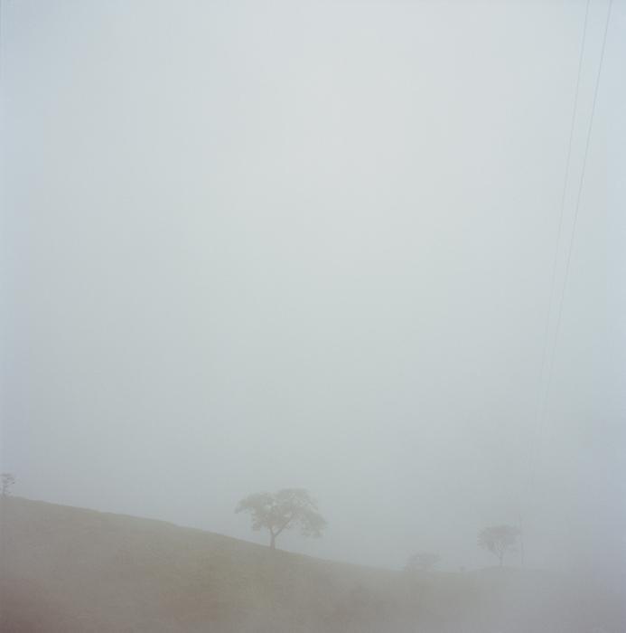 22_costa-rica-cloud-forest.jpg