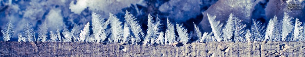 Theme: Cold  <br>Title: Feathers Of Ice 2