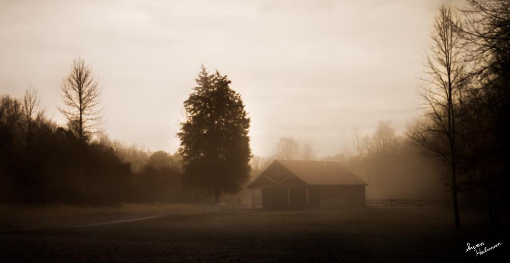 Fog-001.jpg