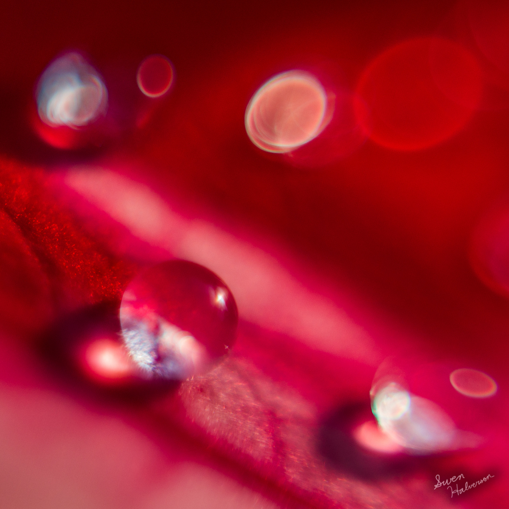 Theme: Narrow | Title: Droplets