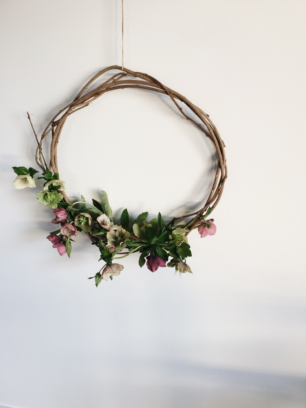 hellebore wreath | netherleigh.co