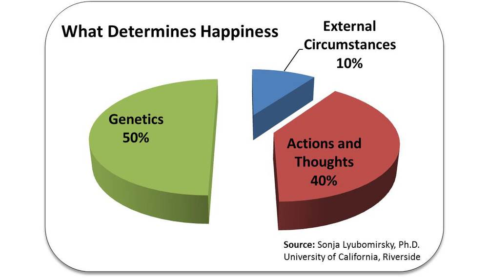 Determines-Happiness-Pie-Chart.jpg
